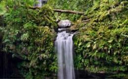 Caribbean Waterfalls