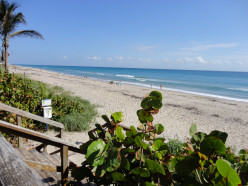A view of the beach - Boynton Beach, Fl