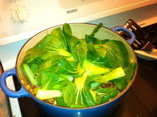 Add bok choy, cover and cook for a few minutes until leaves are wilted.