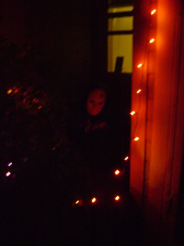Fred at night.