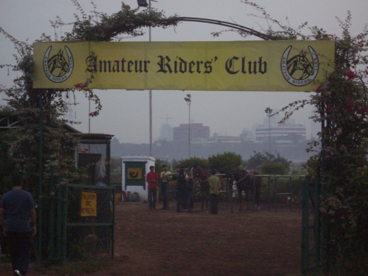 Amateur riders Club for teaching riding skills