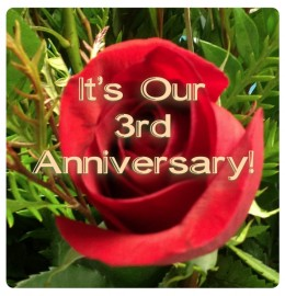 Our 3rd Anniversary!