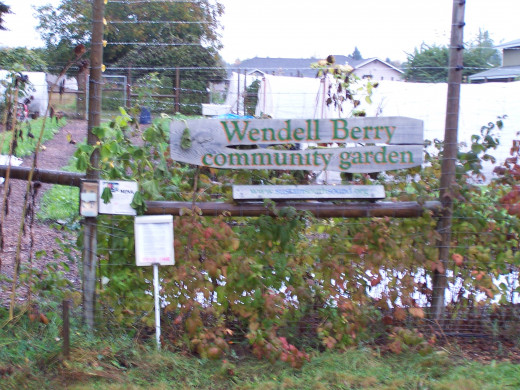 The Wendell Berry Gardens