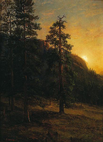 California redwoods, by Albert Bierstadt (1830-1902)