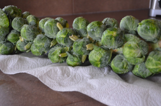 Wash and dry sprouts and then place on a foil lined jelly roll pan sprayed with vegetable spray.
