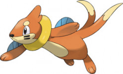 Catching a Buizel in Pokemon Diamond