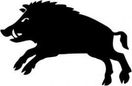 The boar Gullinbursti, 'golden bristles', broughht to life by Adhils' sorcery