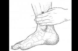 Spleen 6 (3 to 4 finger width above ankle)