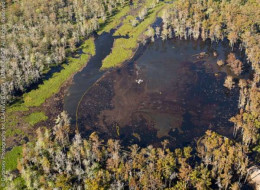 Another natural storage tank or Salt Dome ruptures creating a sinkhole that spills its contents in the surrounding bayou.