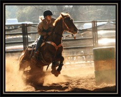 How to Barrel Race Horses