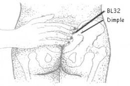 Bladder 32 (Finger width above the depression)
