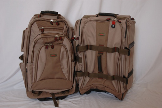 These bags are similar to the carry-on bags with which I travel. They fit within all airline specified dimensions. Both have telescoping pull-handles and wheels.
