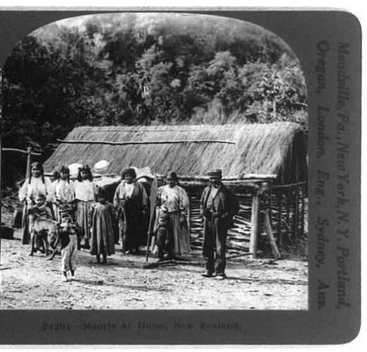 A Maori homestead