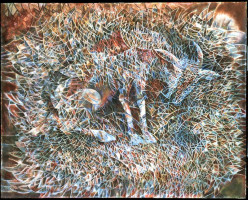 """Chivo"" (Goat) by Contemporary artist Francisco Toledo from Juchitán, Oaxaca, Mexico."