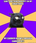 An Unofficial Carrier IQ FAQ: what is it, how it works, how to remove it from your phone such as HTC Evo 4G