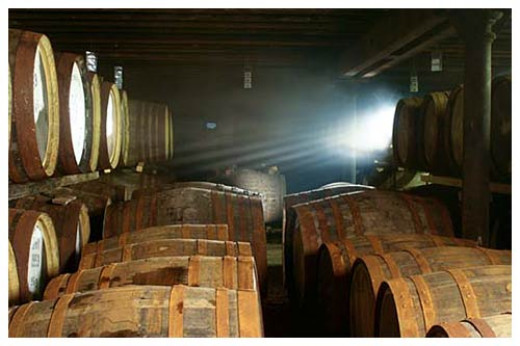 Whisky maturing in oak barrels