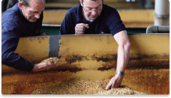 How is Scotch Whisky Made? A Guide to Malting, Mashing, Fermenting, Distilling and Maturing
