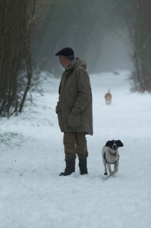 """Man And His Dog In The Snow"" by Tina Phillips http://www.freedigitalphotos.net/images/agree-terms.php?id=10072046"