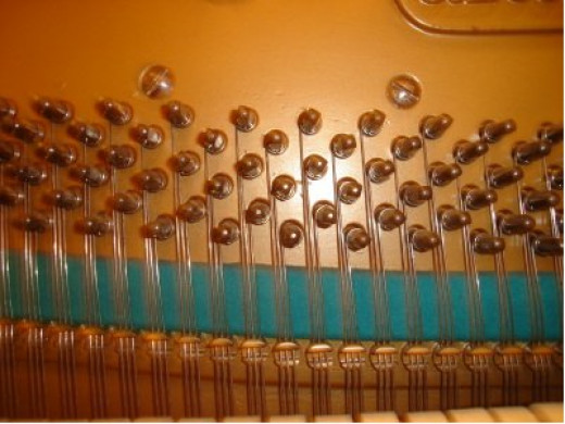 A piano's tuning pegs. Each string has its own peg, which needs to be adjusted individually for tuning.