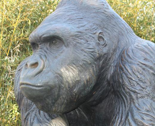 A Gorilla statue at the Great EscAPE at the OKC Zoo