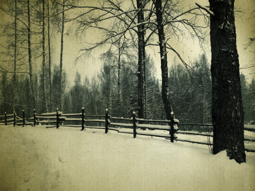 Wintertime is the most frequent time to experience SAD, although some suffer from SAD during the summer.