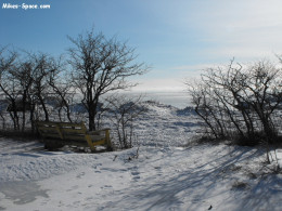 View of the lake shore in winter.