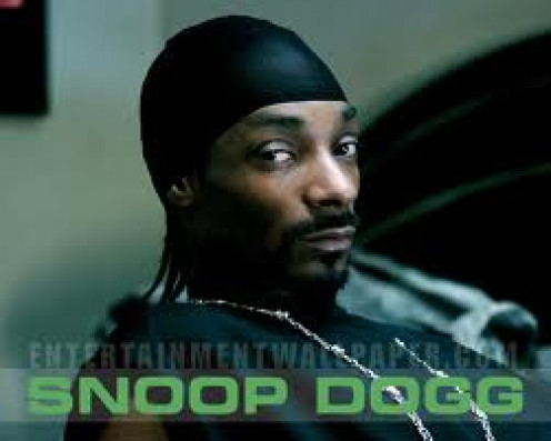 Snoop Dogg is a famous rap star and a mainstream celebrity. He has a smooth flow and some big rap hits.