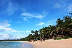 White Sand Palani Beach