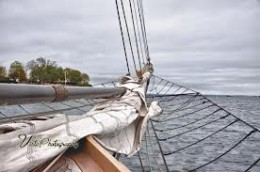 Lets go on a windjammer for Christmas !