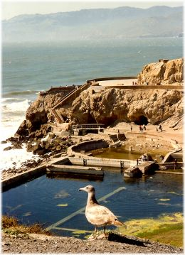 Looking down on the Sutro Bath ruins