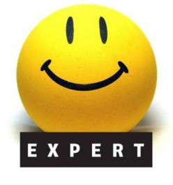 Explaining Expert Systems (ES) in simple terms