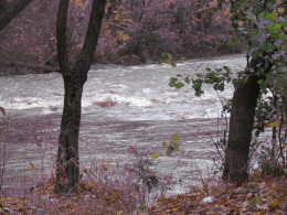 Rushing waters churned in nearby rivers which caused some flooding.