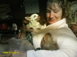 Bella Boo, Momma, & Mr. Lucky.