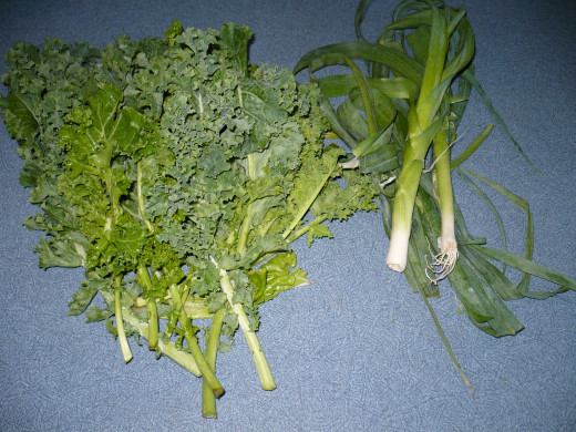 Curly Kale is pictured on the left of this photo.