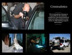 Changes in Criminal Justice