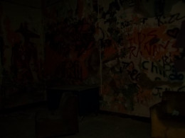 After Pennhurst closed in 1987 vandals would break into the property and cover the walls in graffitti.