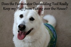 Furminator Review | The Best Dog Brushes and Deshedding Tools