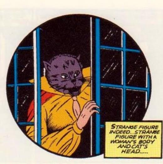 Original Catwoman costume.