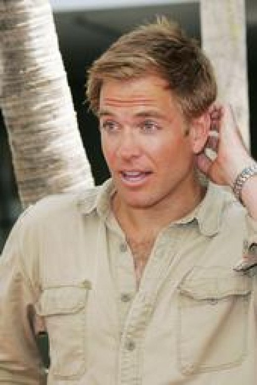 Played by Michael Weatherly