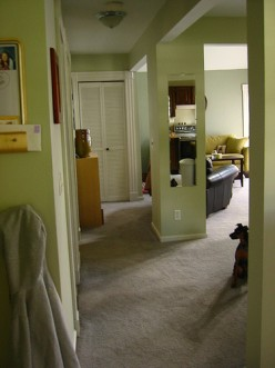 Hall Decorating Ideas on Hallway Decorating  Modern Home Decor Ideas And Tips