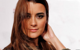 Played by Cote de Pablo