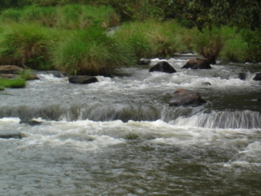 Beautiful river at Kodagu