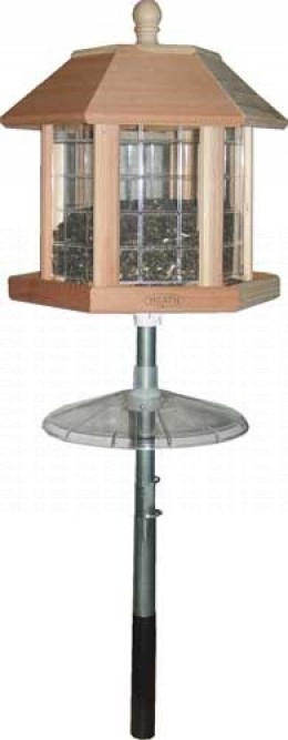 Gazebo style feeders make it easy for birds like cardinals and blue jays to perch comfortably while they dine!