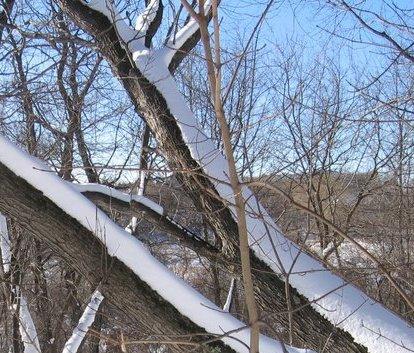 Winter in Lexington, MA