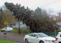 Hurricane Sandy - Mother Nature Meets Bureaucracy