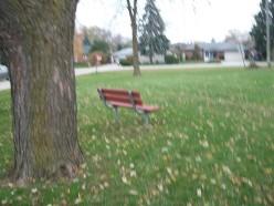 Alan Bradley Park, Mississauga