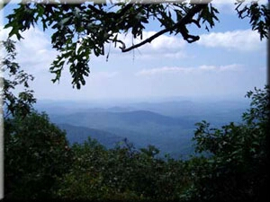 A view from Springer Mountain, the southern terminus of the Appalachian Trail.
