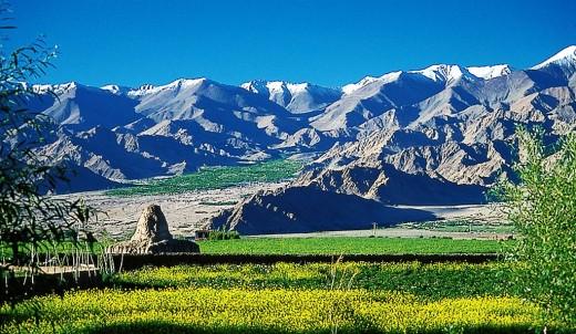 The Indus Valley near Leh, Ladakh