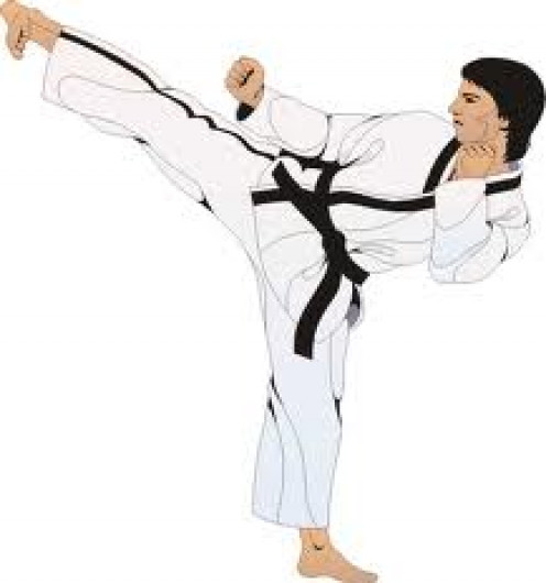 Always do stretch exercises before performing karate. It will help you to get full extension on kicks and punches during competition and it will also help you avoid injuries.