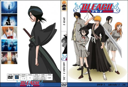 Bleach DVD cover